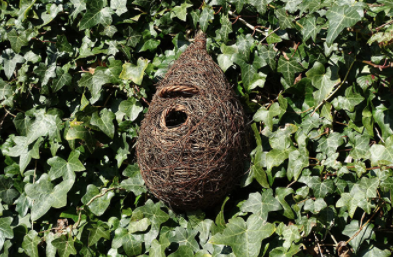 Giant Roost Nest Pocket