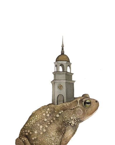 5x7 Art Print: Toad and the Tower