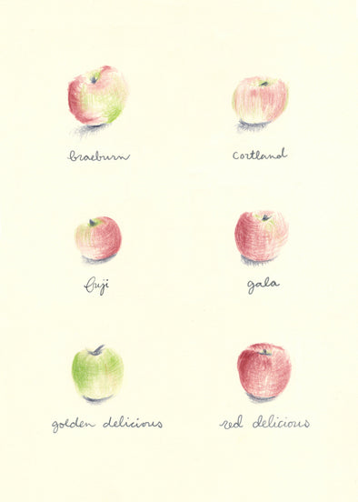 "Apples Watercolor Print 5"" x 7"""