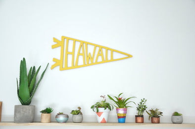 Hawaii Wooden Cut Out - WATERBURY