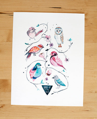 Birds of the Wild 8x10