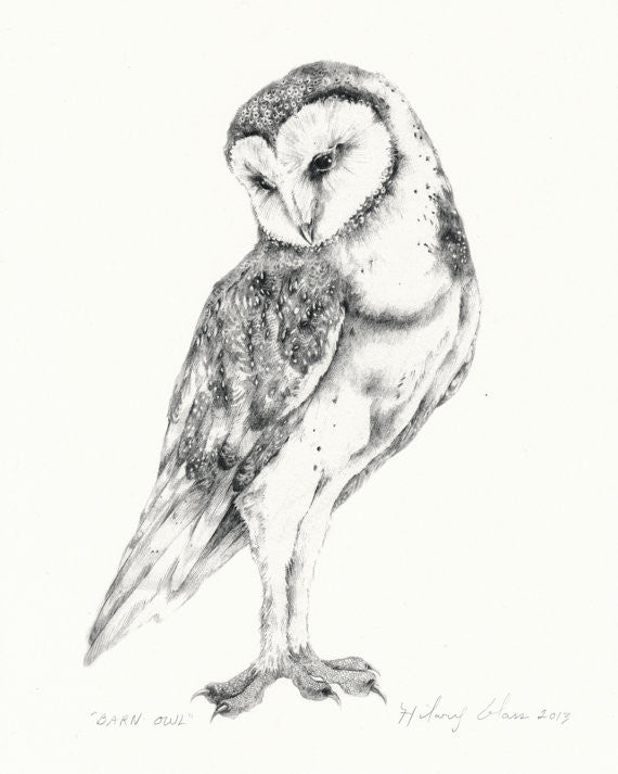 "Barn Owl Print 8"" x 11"" // by Hilary Ann Love Glass"