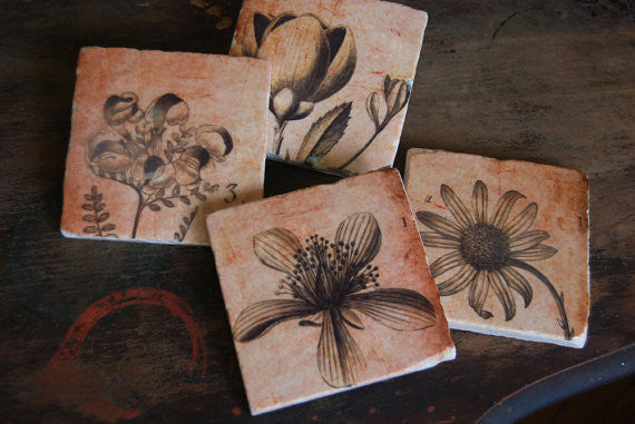 Sepia Botanicals Coasters // Set of 4