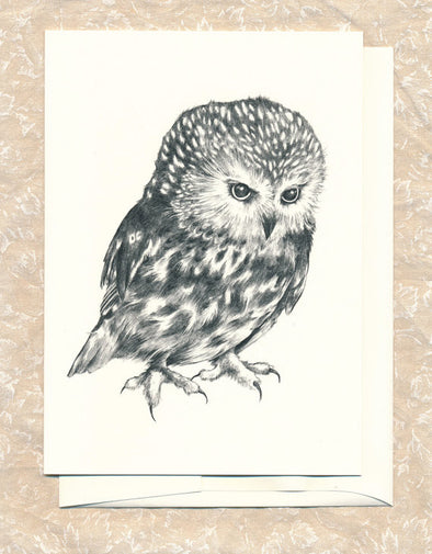 Greeting Card: Saw Whet Owl