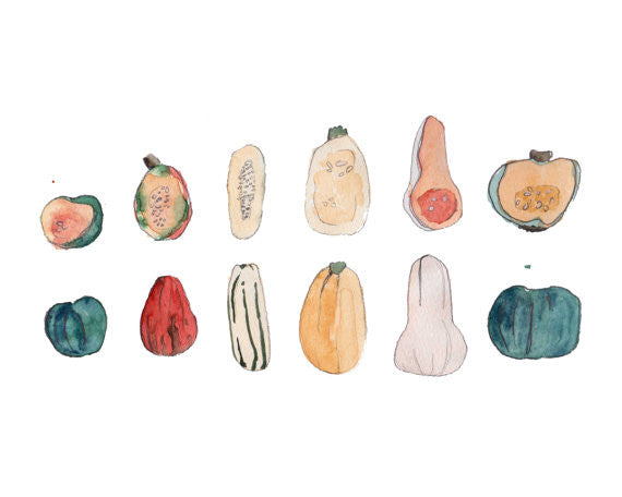 "Squash 8"" x 10"" Watercolor Print"