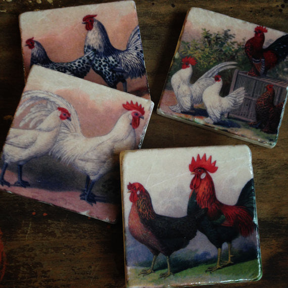 Chickens Coasters // Set of 4