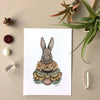 5x7 Art Print: Collector: The Rabbit
