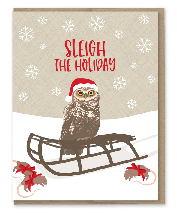 Sleigh the Holiday Owl Card Boxed Set
