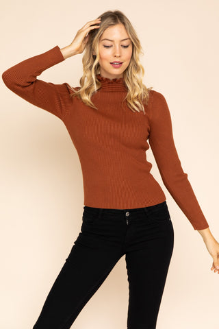 AUTUMN LEAVES TURTLENECK