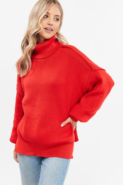 HEART TO HEART TURTLENECK