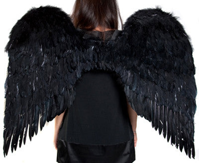 Black 36 Inch Wings