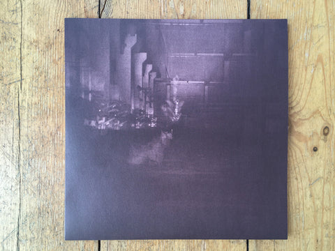 Dub Taylor | Caves & Cages (2LP)