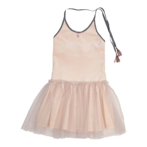 Tutu Dress in Rose