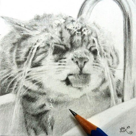 photorealistic pencil drawing cat drinking water