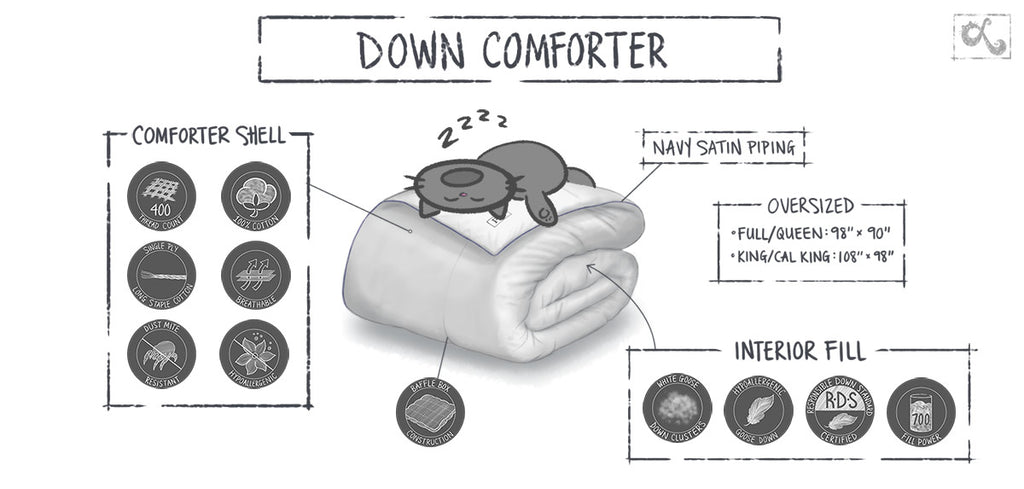 down comforter infographic bedding product illustrations by loraine yow
