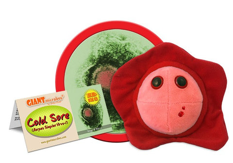 Giant Microbes-Cold Sore (Herpes Simplex Virus-1)
