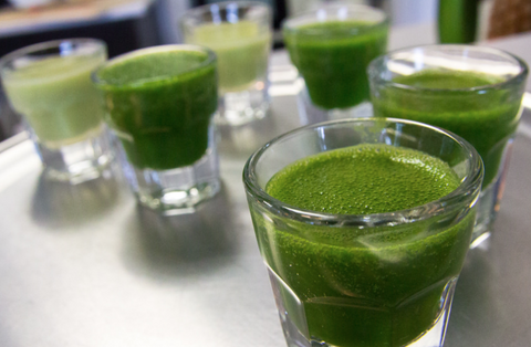 The Truth and Health Benefits Behind Wheatgrass Juice