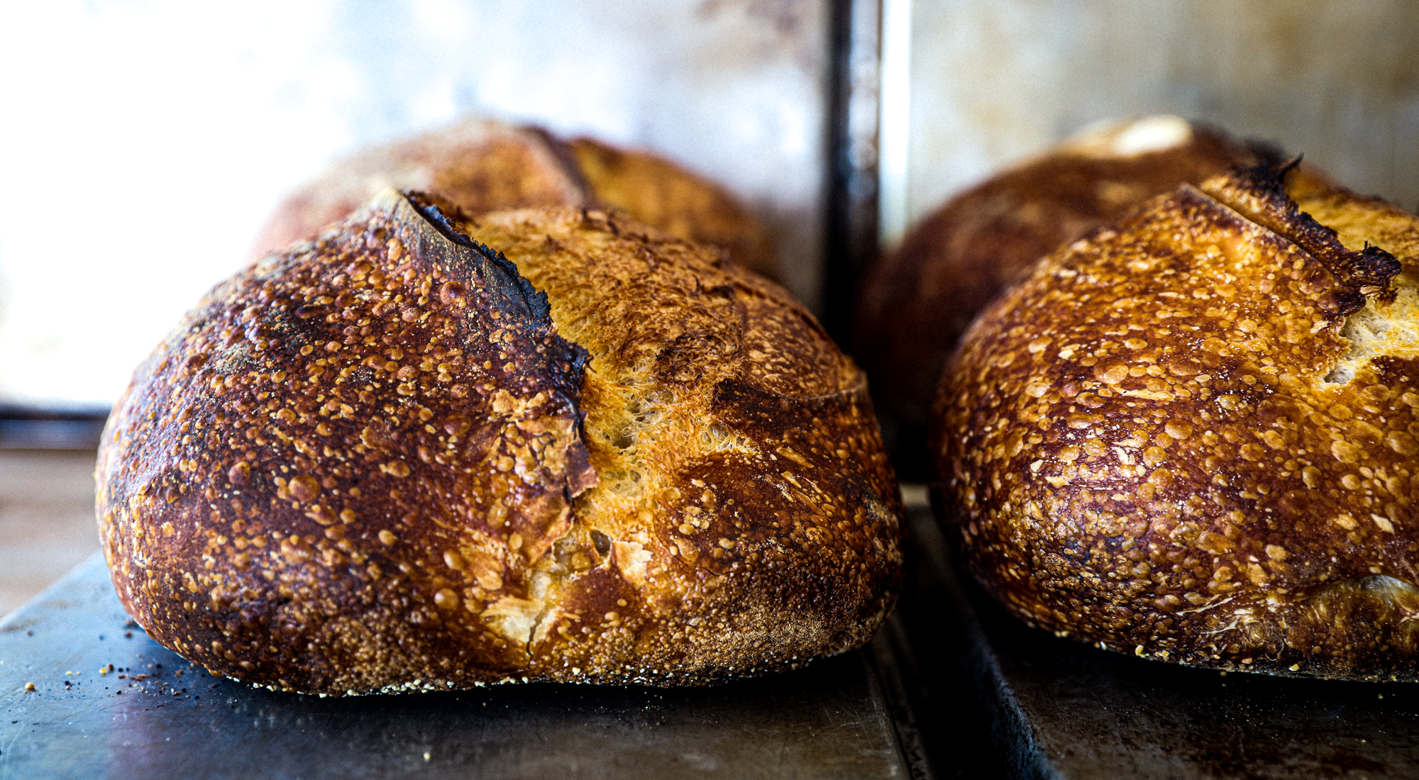Fresh Baked Sourdough Bread <br> by Topanga Mother