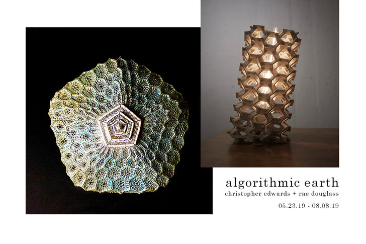 art opening | algorithmic earth