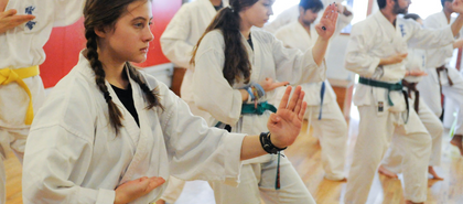 Upper West Side Kenshikai Karate & Brazilian Jiu-Jitsu