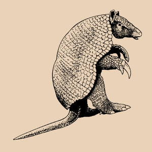 Armadillo Organic Cotton Graphic T-Shirt