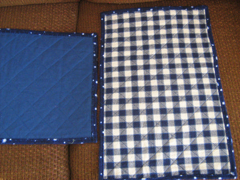 Placemats - Blue Gingham Pattern