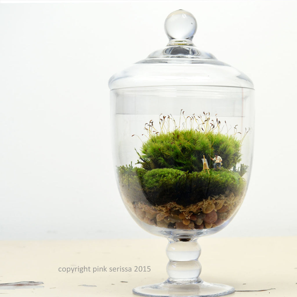 Moss Terrarium// Landscape Painter// DIY kit