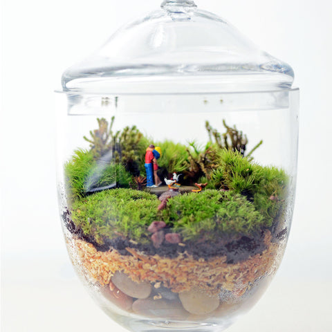Moss Terrarium// Woodland Lovers 1