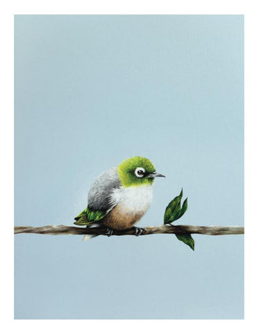New Zealand Art Painting Greeting Cards (5 pack)