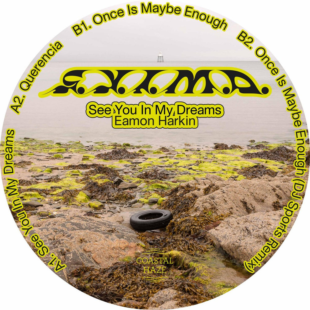 HAZE012 - Eamon Harkin - See You In My Dreams - Coastal Haze
