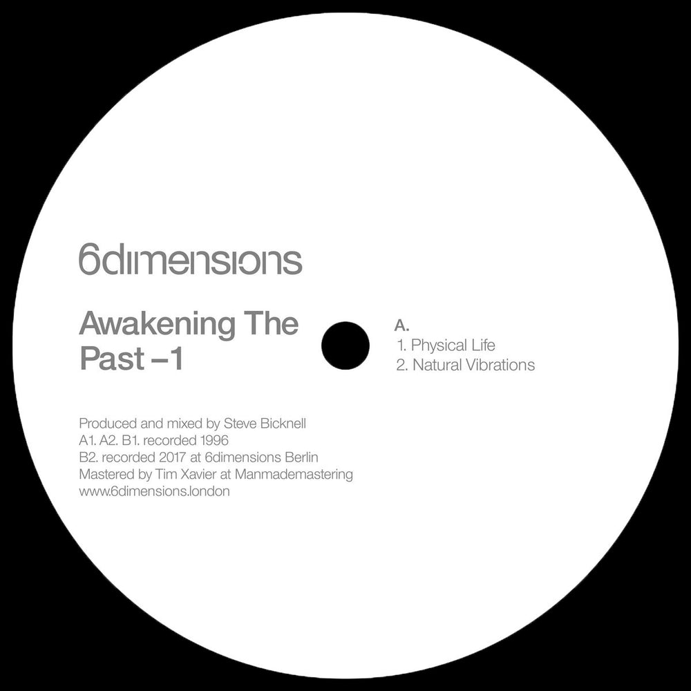 126D-10 - The Evader - Awakening The Past 2 - 12""