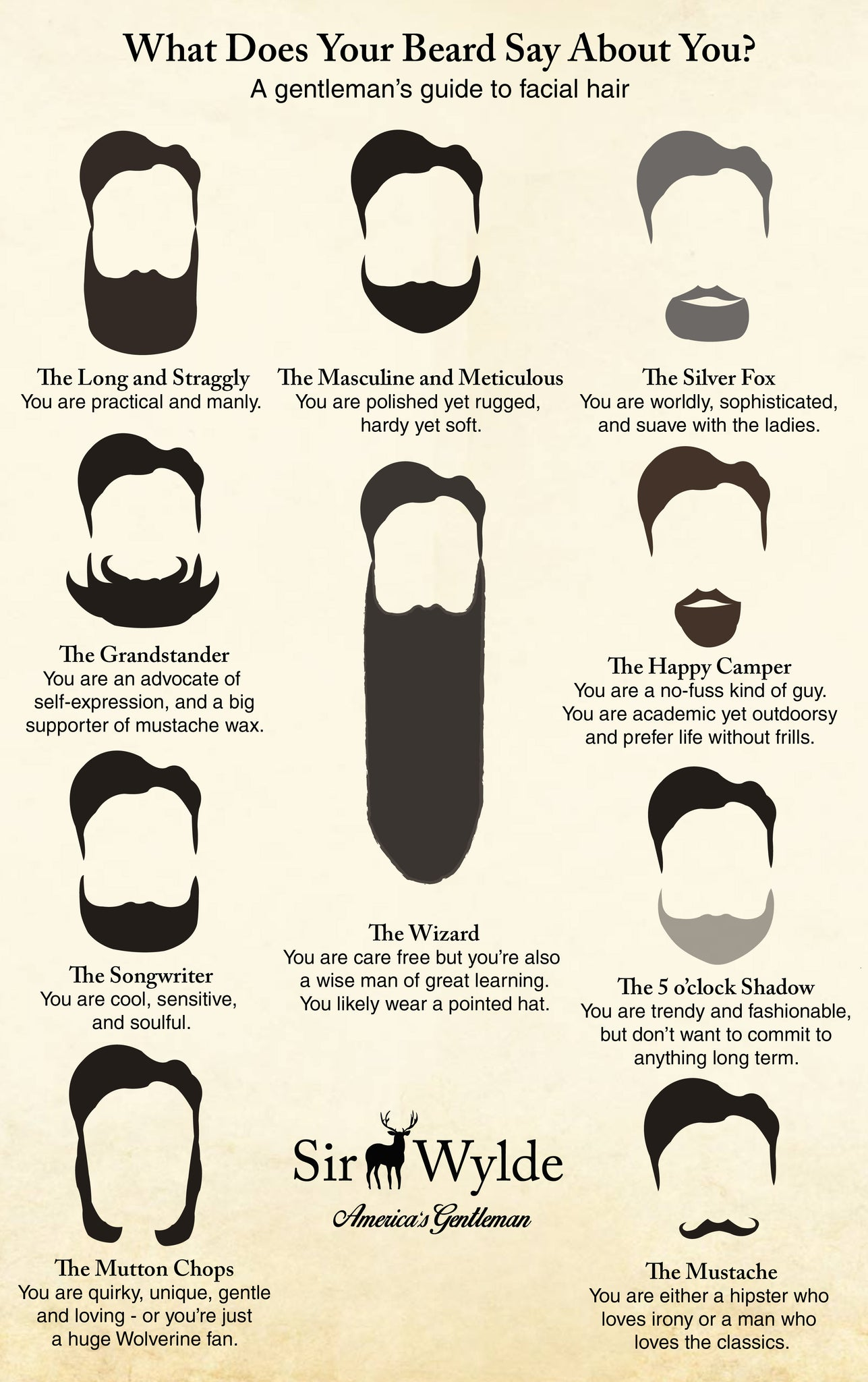 Different Styles of Beard Infographics