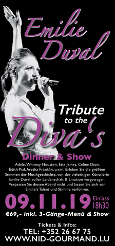 TICKET, TRIBUTE TO THE DIVA'S, DINNERSHOW, 28.09.2019
