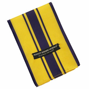 Air Force Commendation Medal Pocket Square Heroes Veteran VFW American Legion
