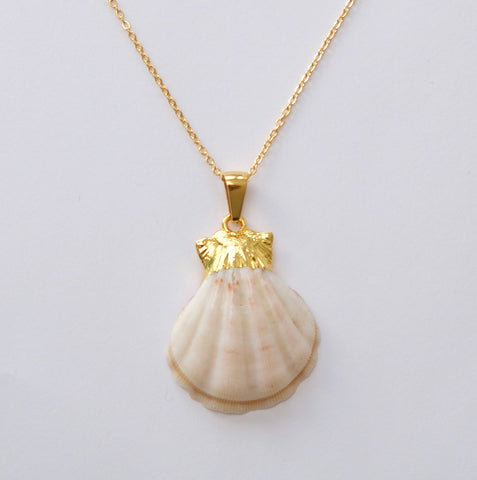 Origins shell long necklace white