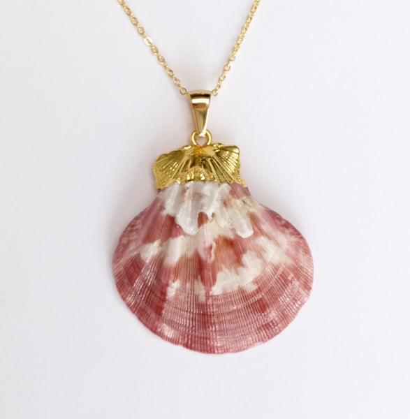 Origins shell midi necklace pinky