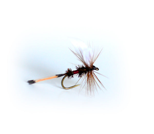 Dry Flies for Trout X 10