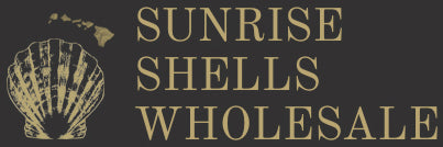 Sunrise Shells Wholesale