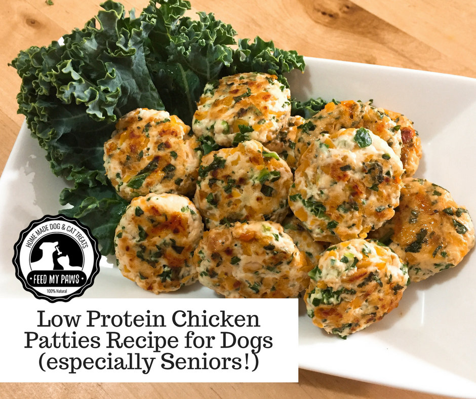 DIY Feed My Paws Recipe: Low Protein Chicken Patties