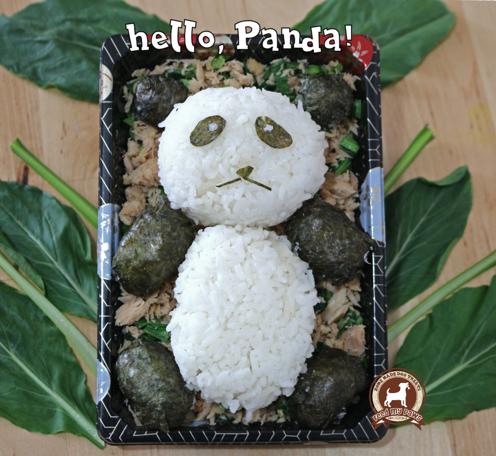 DIY FeedMyPaws Recipe: Panda Onigiri!