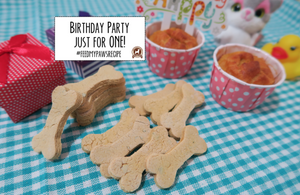 DIY Feed My Paws Recipe: Easy Birthday Cake and Cookies Recipe for One Dog!