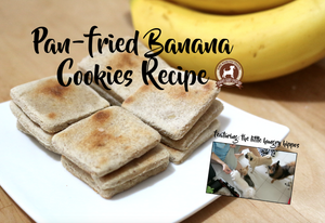 DIY Feed My Paws Recipe: Pan-fried Banana Cookies