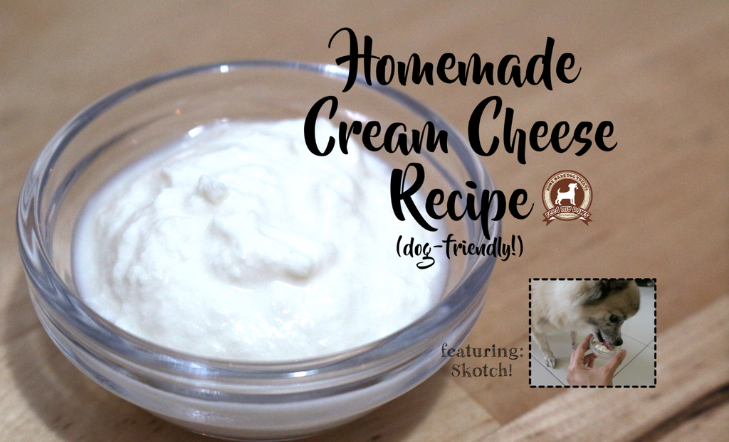 DIY FeedMyPaws Recipe: Homemade Cream Cheese for dogs!