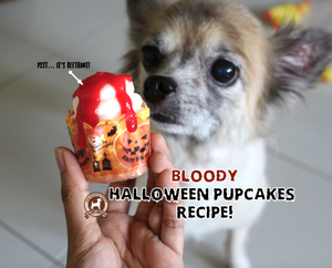 DIY FeedMyPaws Recipe: Bloody Halloween Pupcakes!