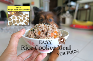 DIY Feed My Paws Recipe: Easy Rice Cooker Meal!