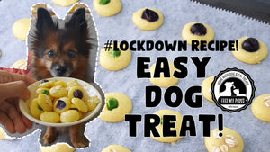 Lockdown Recipe! Easy Dog Treat! Just 4 Ingredients!