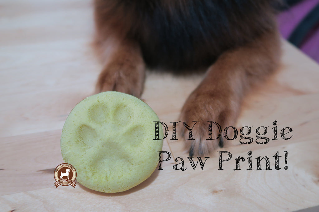 DIY FeedMyPaws Project: Dog Paw Print!