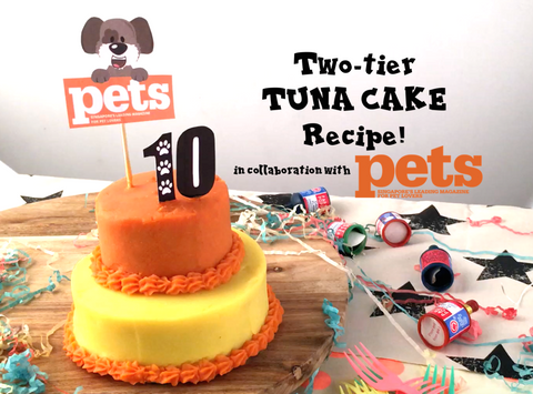 DIY FeedMyPaws Recipe Tuna Birthday Cake