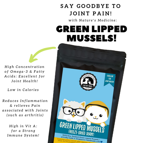 Raw Freeze-dried Green Lipped Mussels *NEW!*
