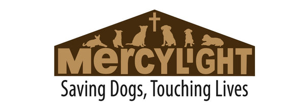 Donate to MercyLight
